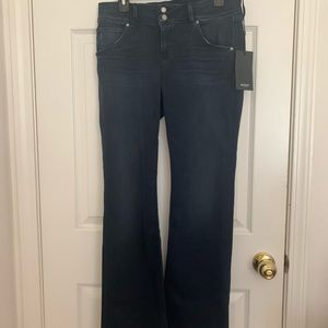 NWT Hudson jeans size 30 petite